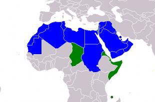 صوره ماهى الدول العربيه وكم عددها