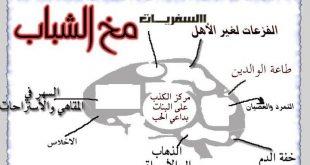 صوره مواضيع ع البنات