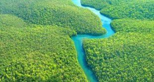 ماهو اكبر نهر في العالم