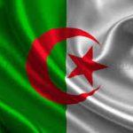 بيت شعري عن حب الجزائر