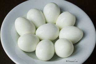 صور فوائد بيض الحمام