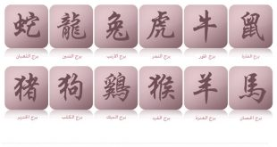 كيف اعرف برجي الصيني من تاريخ ميلادي