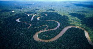ما هو ثاني اطول نهر في العالم