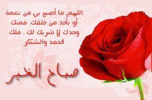بالصور رسائل صباحية رومانسية جزائرية 0cb7d016d9788756805fa4544ce8d0fd 310x205