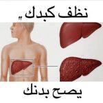 علاج الكيس المائي في الكبد بالاعشاب