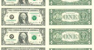 صورة ما هي عملة امريكا
