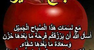 حكم عن الصباح احلى الكلام الصباحي