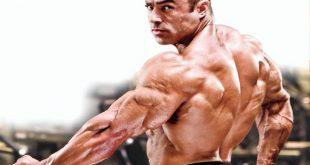 تكبير عضلات الجسم