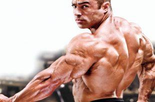 بالصور تكبير عضلات الجسم 2015112710 310x205