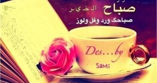 صور صباح الخير صباح الورد