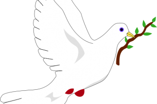 بالصور المولفات التي تناولت قضية السلام والحرب 2015120326 310x205