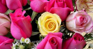 الرد على happy valentine day