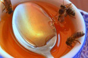 صور فوائد العسل الابيض على الريق