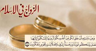 صوره الحياة الزوجية في الاسلام pdf