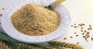 صوره فوائد جنين القمح