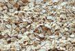 صور فوائد حبوب الشوفان