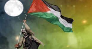 صور صور عن فلسطين 2019