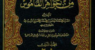 كتاب تاج العروس