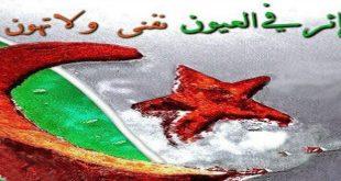 صوره صور جميلة ومعبرة عن الجزائر