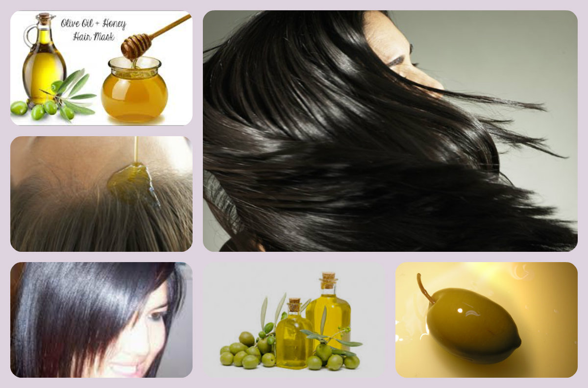 صورة زيت الزيتون لعلاج تساقط الشعر