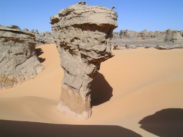 صورة نواع الصخور المكونة للمنظر الطبيعي
