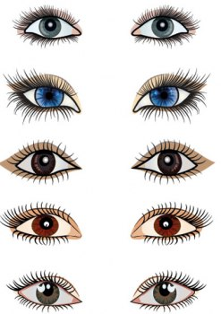 صور انواع العيون بالصور