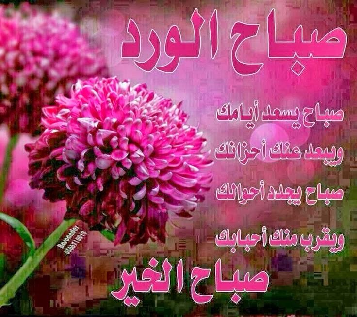 صورة صور صياح الخير , صباح الخير بالصور