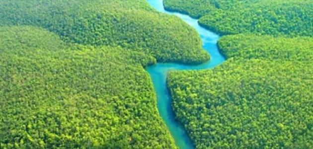 صورة ماهو اكبر نهر في العالم