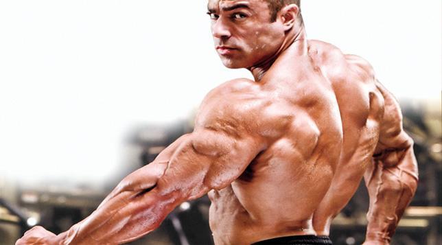 صور تكبير عضلات الجسم