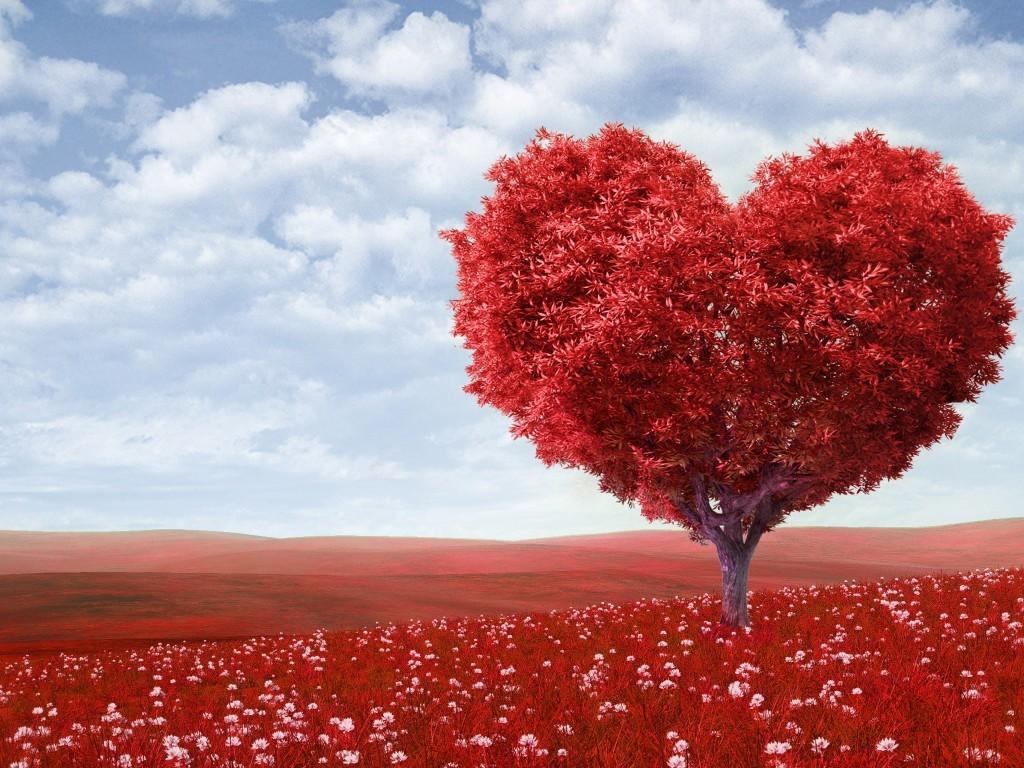 صور حكم ومواعظ في الحب