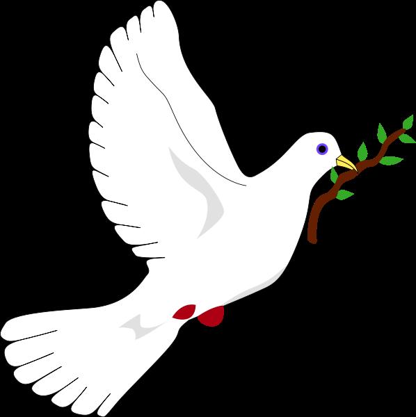 صور المولفات التي تناولت قضية السلام والحرب
