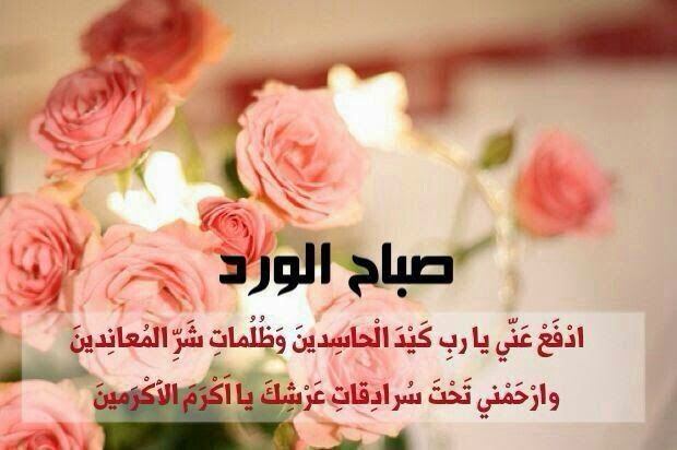 بالصور صور صباح الخير roses , احدث صور صباح الخير 20160807 2533