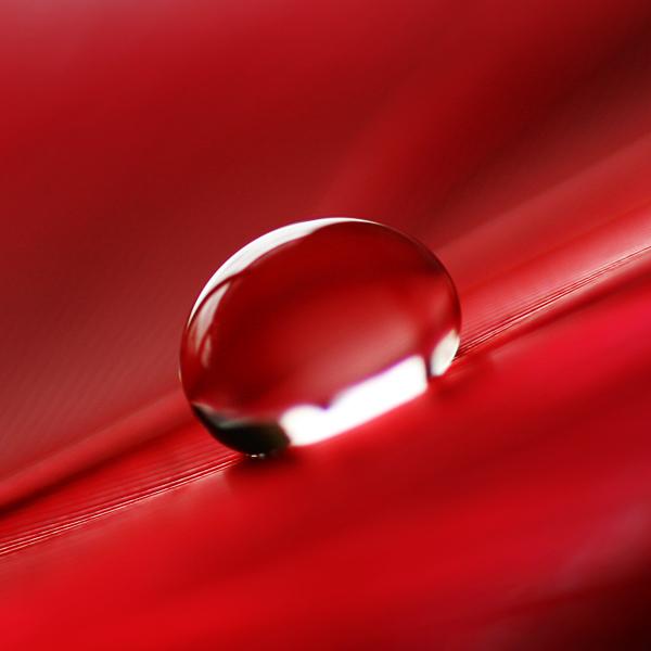 صور خلفيات حمراء