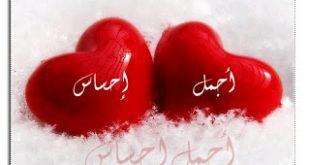 ما هو الشعور بالحب