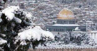 ثلوج فلسطين