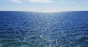 صوره تحضير النص الانسان والبحر