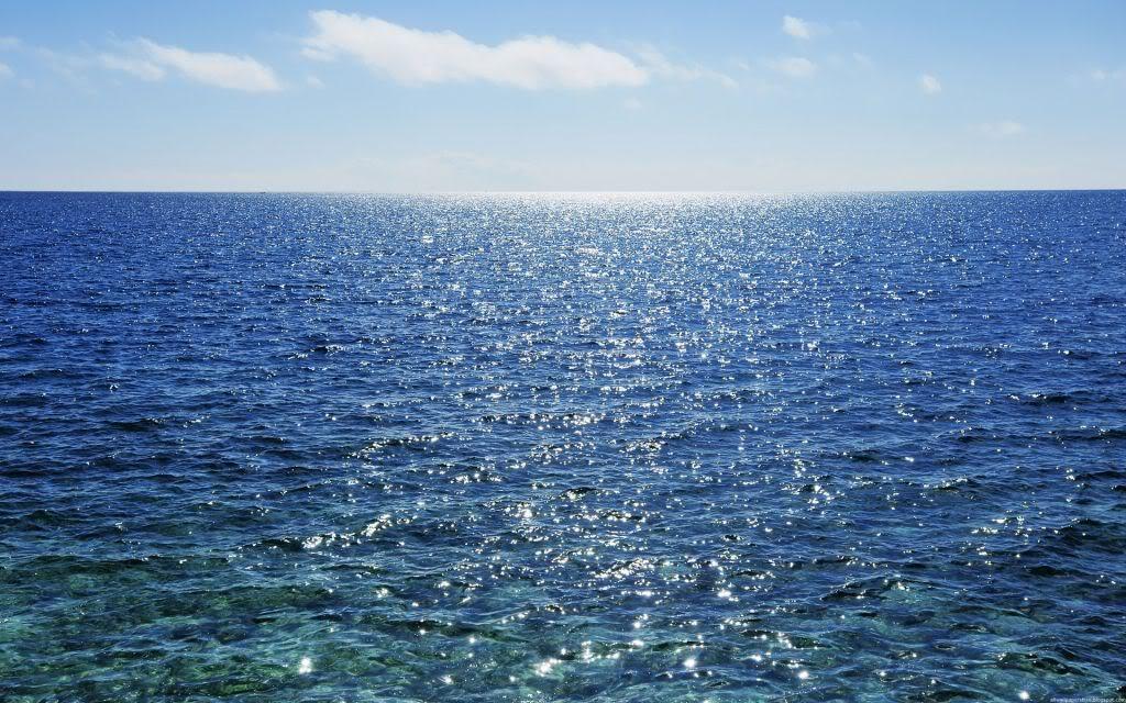 صور تحضير النص الانسان والبحر