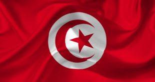 مفتاح تونس , مفتاح دولة تونس