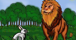 صورة قصة الارنب والاسد