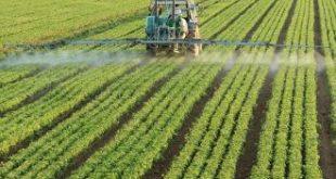 انماط الزراعة فى العالم