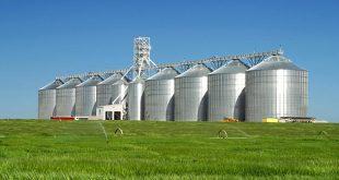 الزراعة التجارية