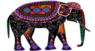 صوره تحضير نص الفيل يا ملك الزمان