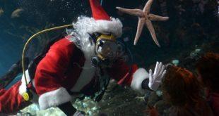صور مدهشة لسانتا كلوز في الماء