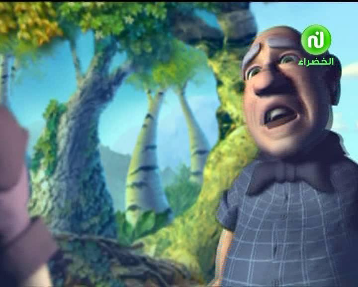 صورة قناة نسمة الخضراء ، مجموعه صور متنوعه من لقطات قناة نسمة الخضراء