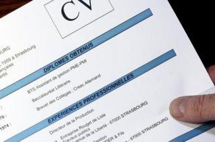 صور طريقة عمل cv لطالب
