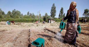 ماهية الفقر الريفي