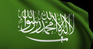 تعداد السعودية 2019