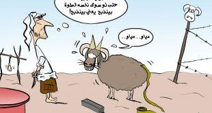 كاريكاتير العيد , كاريكاتير عيد الاضحي