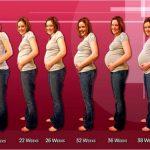 طرق الحمل السريع بعد الزواج