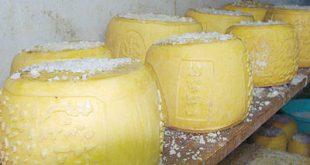 طريقة صنع الجبنة الرومي بالصور